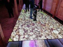 led互动地砖屏河南濮阳绿色庄园项目案例