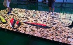 商用led地砖屏显示市场的领跑者-丰舟科技