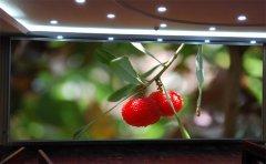 小间距LED显示屏成为带动销售市场持续上升的关键动力